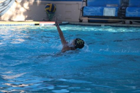 Water Polo Recap