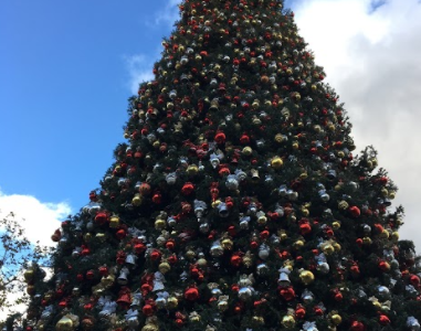 Los Angeles Destinations to Get Into the Christmas Spirit