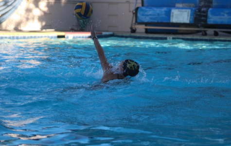 Water Polo Recap