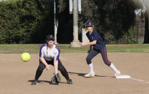 The Run of their Lives: a Softball Midseason Spotlight