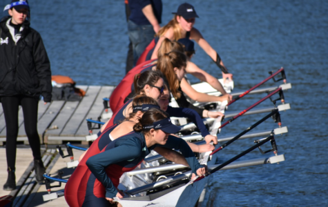 Rowing Regatta Season