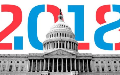 What Do the Latest Congressional Elections Mean for Our Country?