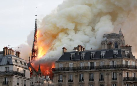 Reaction to Notre-Dame de Paris Donations