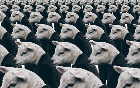 Visualization of a herd mentality. Courtesy of si.wsj.net