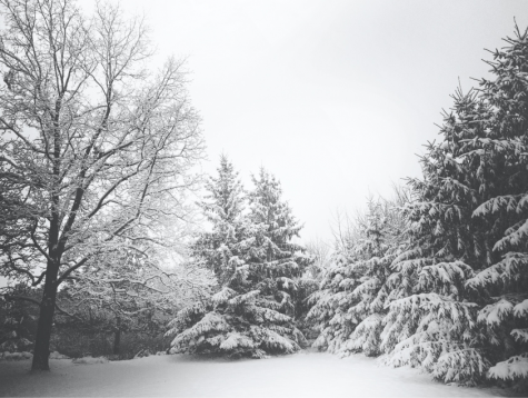 Understanding Seasonal Affective Disorder